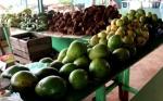 Abrió en La Habana el primer Mercado Mayorista de productos agropecuarios